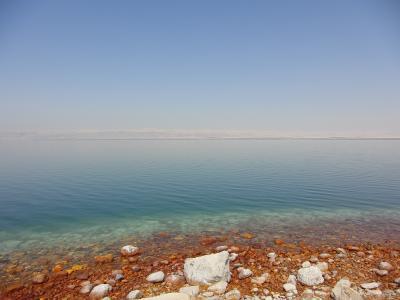 友人を訪ねて 贅沢なヨルダン・レバノン旅行記3日目(死海~ペトラ)