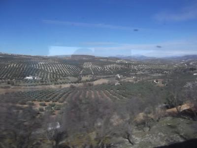 2回目のスペイン グラナダ・セビーリア・マドリッドへ ② 2日目:グラナダへ