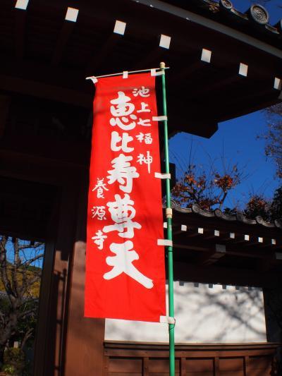 巡れ七福!フライング初詣in東京②