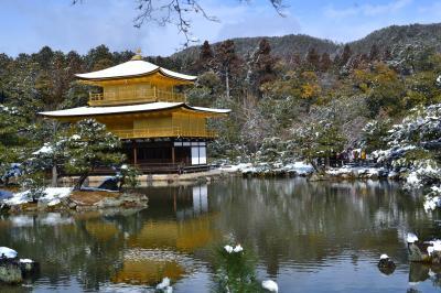 雪の金閣寺(速報)