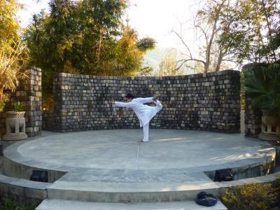 <お腹を壊さない程度の>北インドの旅 ④ リシケシアーナンダインヒマラヤへ