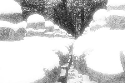 白黒の東光寺の世界 (その2?)