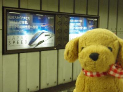 ロッテソウルツアー当選☆2011 ただいま~編・上野で後泊『三井ガーデンホテル上野』