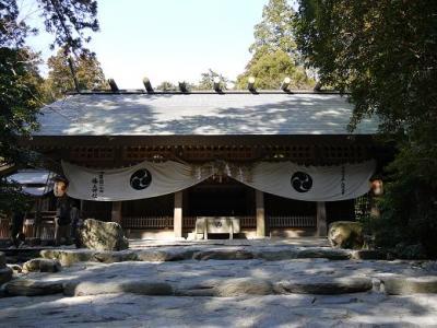 結城神社の梅の花&パワースポット椿大神社☆
