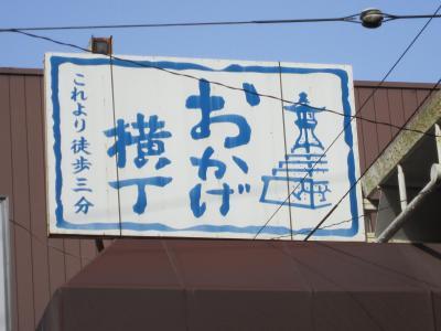 伊勢志摩国立公園の旅:おかげ横丁