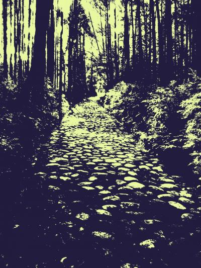 越すに越されぬ大井川----駿府城から東海道を西へ!