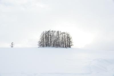 2012.01冬の青春18きっぷ道東スローな旅「美瑛ドライブ⇒新得」-JR線全線乗りつぶし-