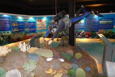 サッタヒープ Thai Island & Sea Natural History Museum