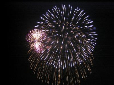 板橋花火大会 2005年