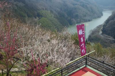 春はいつ来るの? 梅の名所『月ヶ瀬梅渓』へ行きました