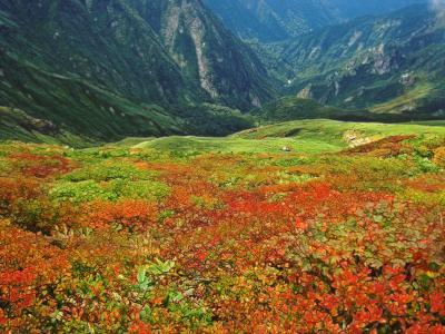 谷川岳1977mの登山