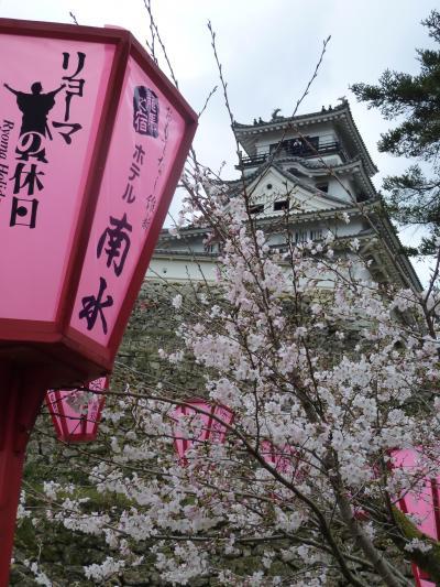 2012年03月 桜満開宣言!!シーズン突入 高知市内お花見スポットその後♪