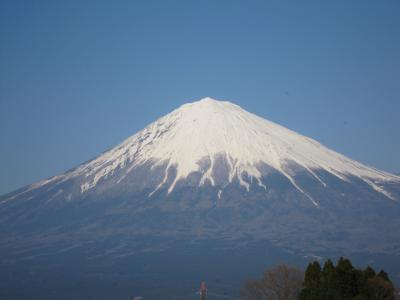 新富士でほっ 北斎SPAでファスティング&エステ三昧の4日間