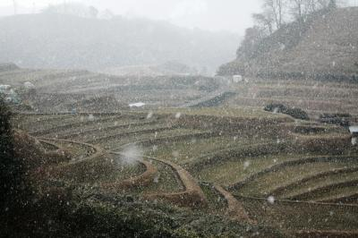 雪の棚田(千早赤阪村)