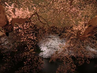 2012年4月 九段下の桜