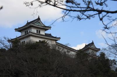 和歌山城公園の花見(桜)と観光&撮影スポットの穴場編