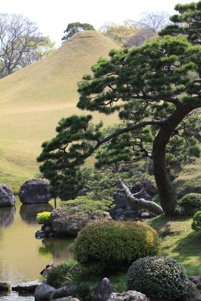 【熊本観光】 東海道五十三次の景勝を模した大名庭園 「水前寺成趣園」
