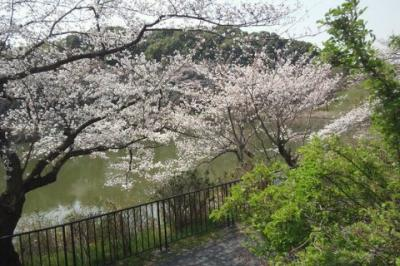北千里駅から阪大キャンパスまで徒歩・・LEO君と