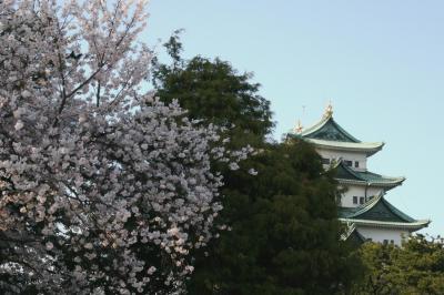 2012編、東海地方のお城と桜(総集編)