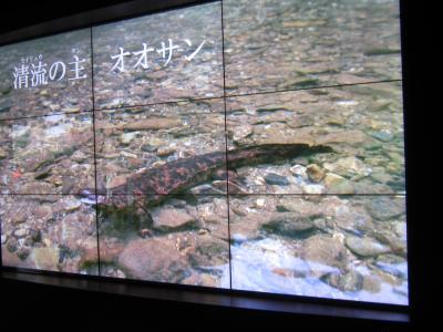 兄弟・姉妹会(第四回)~京都水族館