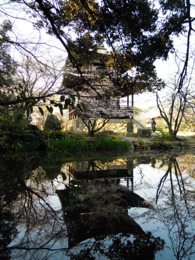 京都桜旅と東海道昼間特急バス