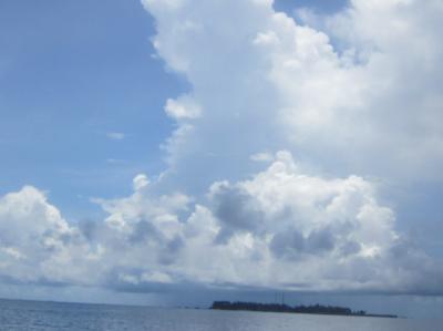 ジャングルとサンゴ礁の島 カリマンタン ブラウ