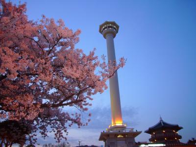 エアプサンで行く春の釜山3日間
