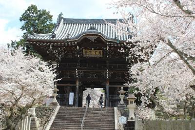 和歌山へ・・・春を感じる旅