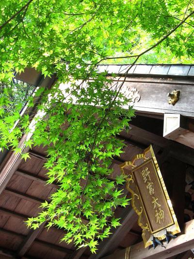 やっぱ京都ってすげ~なぁ!「京都嵐山温泉 絹の湯 花伝抄」さんモニタープラン一人旅【お宿と散策編】