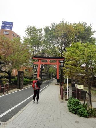 大宮朝のお散歩 中山道