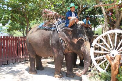 2012年4月バンコク旅行 ソンクラ~ン時期にカンチャナブリへ&虎寺へ遠足編♪