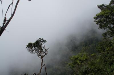 20120319 キャメロン・ハイランド Gunung Brinchangでも行ってみるかね