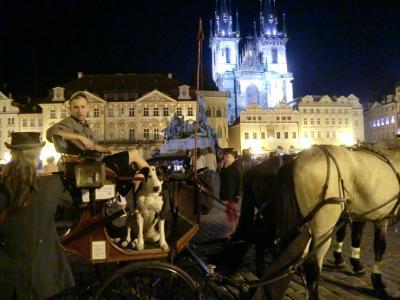 ボヘミアの洗礼~プラハの春@2012