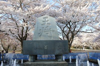 みちのく桜紀行 2012年 その1 山寺から天童 舞鶴公園(天童公園)と倉津川しだれ桜