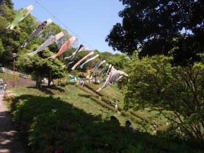 金沢自然公園で遊ぶ子どもの日!