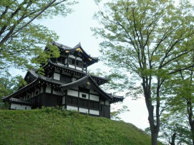 桜が散る前に来たかった高田公園