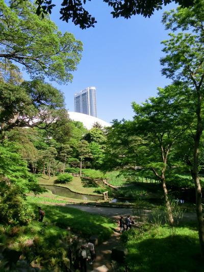 ガイドツアーでたっぷり2時間【小石川後楽園】 +おまけで【東京ドームシティ】