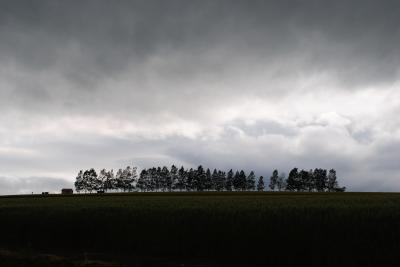 チャリンコで走る美瑛の町