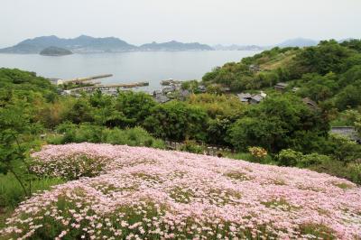 志々島2012春
