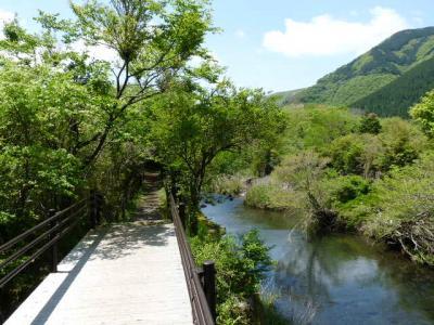 2日目 強羅グリーンハイツと仙石原の早川沿いを歩いてみる。