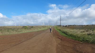 ハワイ島2012 海外初運転 コハラをドライブ