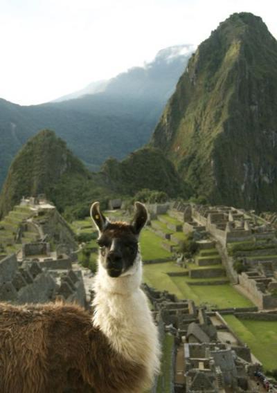 インカの末裔と辿るマチュピチュ