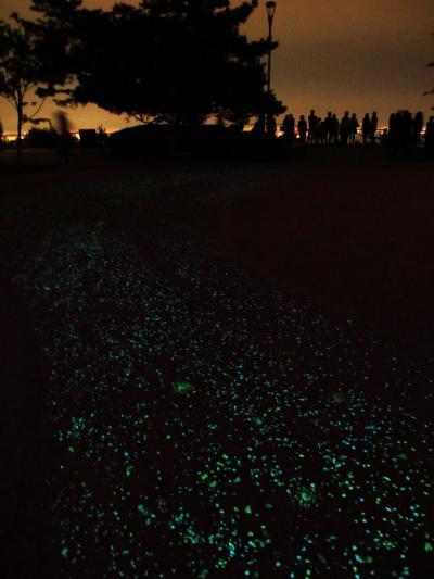 2012年 日本三大夜景「麻耶山掬星台」