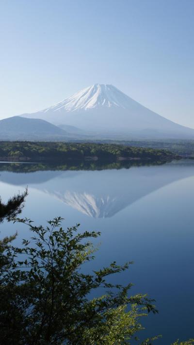 富士山を撮る(富士芝桜まつり、富士五湖)
