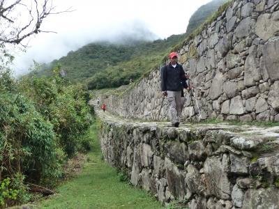 msa794南米周遊旅情7章⑭太陽の門(インティプンク)へ向かうインカ道 in マチュピチュ