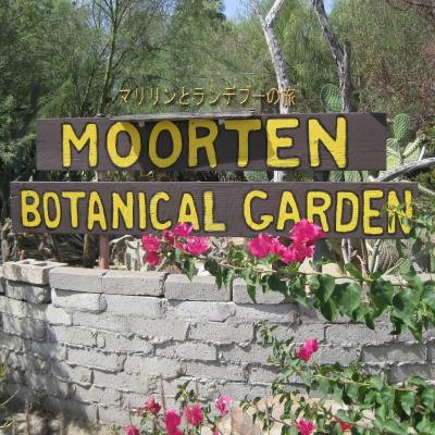 Rendezvous with Marilyn マリリンとランデブーの旅: Moorten Botanical Garden ムアテン植物園