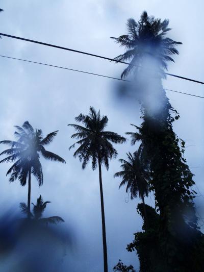 Walk in the rain♪ シンガポール Singapore からの週末エスケープ、カンポンアイルバタン、ティオマン ABC,Tioman