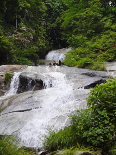滝メグラーさんたちと歩く 伊吹山西麓の五色の滝