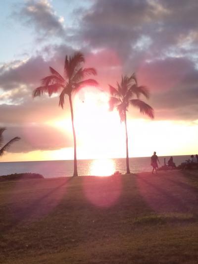 久しぶりのハワイ