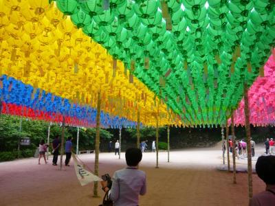 釜山旅行に変更